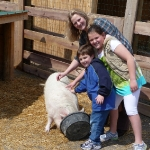 Petting farm at the Creation Museum