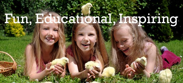 Junior school children with chicks